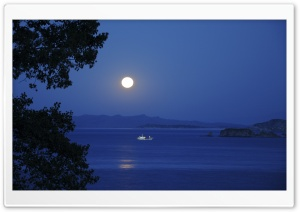 Full Moon Night HD Wide Wallpaper for Widescreen