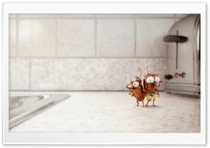 Funny Cute Cockroaches 3D Ultra HD Wallpaper for 4K UHD Widescreen desktop, tablet & smartphone