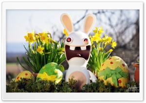 Funny Easter Bunny HD Wide Wallpaper for Widescreen