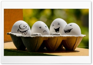 Funny Eggs HD Wide Wallpaper for Widescreen