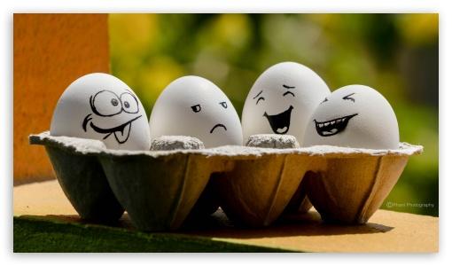Funny Eggs ❤ 4K UHD Wallpaper for UltraWide 21:9 24:10 ; 4K UHD 16:9 Ultra High Definition 2160p 1440p 1080p 900p 720p ; UHD 16:9 2160p 1440p 1080p 900p 720p ; Mobile 16:9 - 2160p 1440p 1080p 900p 720p ; Dual 4:3 5:4 UXGA XGA SVGA QSXGA SXGA ;