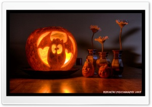 Funny Halloween Pumpkin HD Wide Wallpaper for 4K UHD Widescreen desktop & smartphone