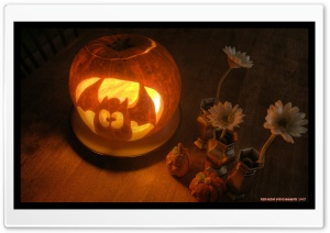 Funny Jack O Lantern HD Wide Wallpaper for Widescreen