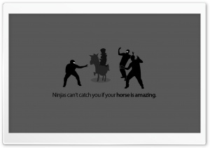 Funny Ninjas HD Wide Wallpaper for Widescreen