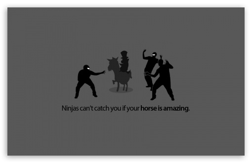 Funny Ninjas HD wallpaper for Standard 4:3 5:4 Fullscreen UXGA XGA SVGA QSXGA SXGA ; Wide 16:10 5:3 Widescreen WHXGA WQXGA WUXGA WXGA WGA ; HD 16:9 High Definition WQHD QWXGA 1080p 900p 720p QHD nHD ; Other 3:2 DVGA HVGA HQVGA devices ( Apple PowerBook G4 iPhone 4 3G 3GS iPod Touch ) ; Mobile VGA WVGA iPhone iPad PSP Phone - VGA QVGA Smartphone ( PocketPC GPS iPod Zune BlackBerry HTC Samsung LG Nokia Eten Asus ) WVGA WQVGA Smartphone ( HTC Samsung Sony Ericsson LG Vertu MIO ) HVGA Smartphone ( Apple iPhone iPod BlackBerry HTC Samsung Nokia ) Sony PSP Zune HD Zen ; Tablet 2 ;