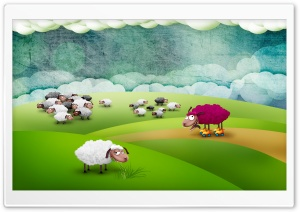 Funny Sheeps HD Wide Wallpaper for Widescreen