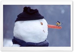 Funny Snowman HD Wide Wallpaper for 4K UHD Widescreen desktop & smartphone