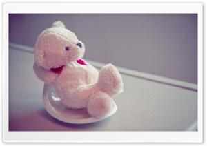 Furry Teddy HD Wide Wallpaper for Widescreen
