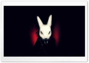 FURY RABBIT HD Wide Wallpaper for Widescreen