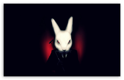 FURY RABBIT HD wallpaper for Wide 16:10 5:3 Widescreen WHXGA WQXGA WUXGA WXGA WGA ; HD 16:9 High Definition WQHD QWXGA 1080p 900p 720p QHD nHD ; Standard 4:3 5:4 3:2 Fullscreen UXGA XGA SVGA QSXGA SXGA DVGA HVGA HQVGA devices ( Apple PowerBook G4 iPhone 4 3G 3GS iPod Touch ) ; Tablet 1:1 ; iPad 1/2/Mini ; Mobile 4:3 5:3 3:2 16:9 5:4 - UXGA XGA SVGA WGA DVGA HVGA HQVGA devices ( Apple PowerBook G4 iPhone 4 3G 3GS iPod Touch ) WQHD QWXGA 1080p 900p 720p QHD nHD QSXGA SXGA ;