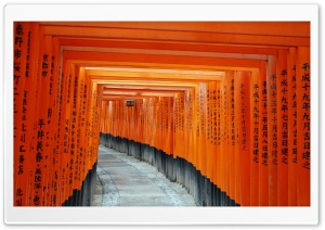 Fushimi Inari Taisha, Kyoto, Japan HD Wide Wallpaper for Widescreen