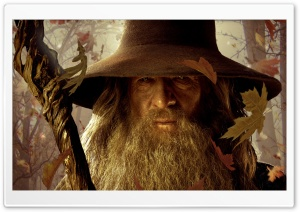 Gandalf HD Wide Wallpaper for Widescreen