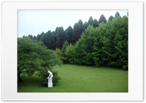 Garden Ultra HD Wallpaper for 4K UHD Widescreen desktop, tablet & smartphone