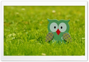 Garden Owl Decoration HD Wide Wallpaper for Widescreen