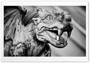 Gargoyle HD Wide Wallpaper for Widescreen
