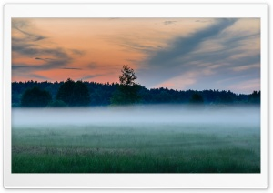 Ghost Mist HD Wide Wallpaper for Widescreen