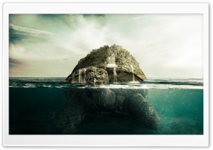 Giant Turtle HD Wide Wallpaper for Widescreen