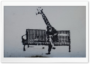 Giraffe Graffiti HD Wide Wallpaper for Widescreen