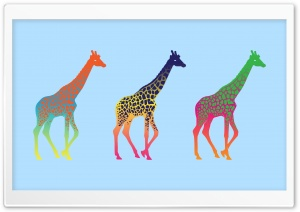 Giraffes HD Wide Wallpaper for Widescreen
