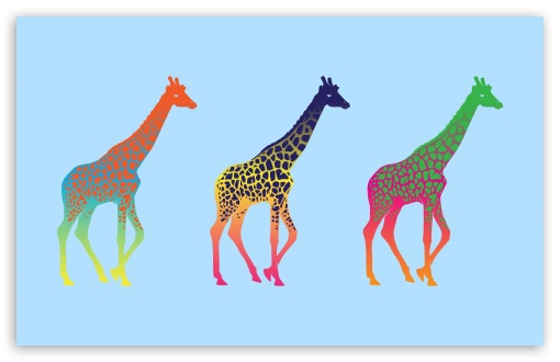 Giraffes HD wallpaper for Wide 16:10 5:3 Widescreen WHXGA WQXGA WUXGA WXGA WGA ; HD 16:9 High Definition WQHD QWXGA 1080p 900p 720p QHD nHD ; Standard 3:2 Fullscreen DVGA HVGA HQVGA devices ( Apple PowerBook G4 iPhone 4 3G 3GS iPod Touch ) ; Tablet 1:1 ; Mobile 5:3 3:2 16:9 - WGA DVGA HVGA HQVGA devices ( Apple PowerBook G4 iPhone 4 3G 3GS iPod Touch ) WQHD QWXGA 1080p 900p 720p QHD nHD ;
