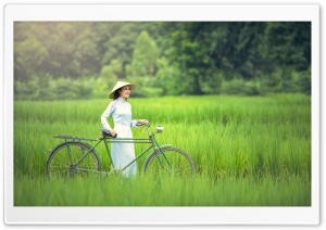 Girl, Bicycle, Rice Field Landscape Ultra HD Wallpaper for 4K UHD Widescreen desktop, tablet & smartphone