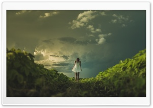 Girl, Field, Storm Clouds Ultra HD Wallpaper for 4K UHD Widescreen desktop, tablet & smartphone