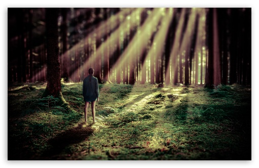Girl in the Forest UltraHD Wallpaper for Wide 16:10 5:3 Widescreen WHXGA WQXGA WUXGA WXGA WGA ; 8K UHD TV 16:9 Ultra High Definition 2160p 1440p 1080p 900p 720p ; Standard 4:3 5:4 3:2 Fullscreen UXGA XGA SVGA QSXGA SXGA DVGA HVGA HQVGA ( Apple PowerBook G4 iPhone 4 3G 3GS iPod Touch ) ; Smartphone 16:9 3:2 5:3 2160p 1440p 1080p 900p 720p DVGA HVGA HQVGA ( Apple PowerBook G4 iPhone 4 3G 3GS iPod Touch ) WGA ; Tablet 1:1 ; iPad 1/2/Mini ; Mobile 4:3 5:3 3:2 16:9 5:4 - UXGA XGA SVGA WGA DVGA HVGA HQVGA ( Apple PowerBook G4 iPhone 4 3G 3GS iPod Touch ) 2160p 1440p 1080p 900p 720p QSXGA SXGA ;