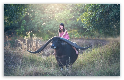 Girl riding a Longhorn Buffalo ❤ 4K UHD Wallpaper for Wide 16:10 5:3 Widescreen WHXGA WQXGA WUXGA WXGA WGA ; UltraWide 21:9 24:10 ; 4K UHD 16:9 Ultra High Definition 2160p 1440p 1080p 900p 720p ; UHD 16:9 2160p 1440p 1080p 900p 720p ; Standard 4:3 5:4 3:2 Fullscreen UXGA XGA SVGA QSXGA SXGA DVGA HVGA HQVGA ( Apple PowerBook G4 iPhone 4 3G 3GS iPod Touch ) ; Tablet 1:1 ; iPad 1/2/Mini ; Mobile 4:3 5:3 3:2 16:9 5:4 - UXGA XGA SVGA WGA DVGA HVGA HQVGA ( Apple PowerBook G4 iPhone 4 3G 3GS iPod Touch ) 2160p 1440p 1080p 900p 720p QSXGA SXGA ;