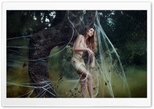 Girl Spider Web HD Wide Wallpaper for Widescreen