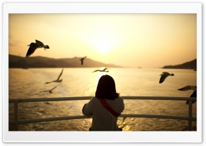 Girl Watching The Sunset HD Wide Wallpaper for Widescreen