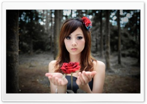 Girl With Flower HD Wide Wallpaper for Widescreen