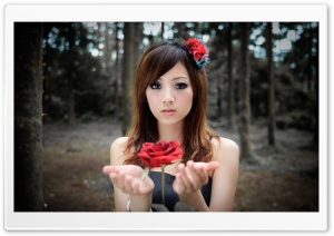 Girl With Red Rose HD Wide Wallpaper for Widescreen