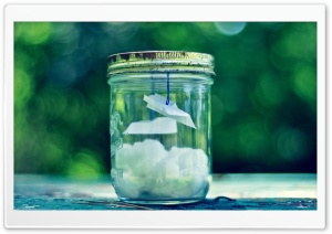 Glass Jar HD Wide Wallpaper for Widescreen