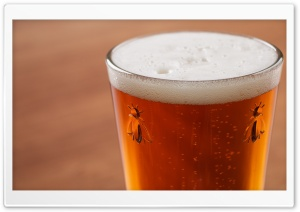 Glass of Beer Ultra HD Wallpaper for 4K UHD Widescreen desktop, tablet & smartphone