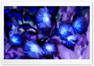 Glowing Flowers inspired by Avatar HD Wide Wallpaper for Widescreen