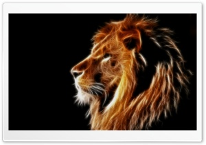 Glowing Lion HD Wide Wallpaper for Widescreen