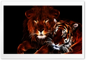 Glowing Lion and Tiger HD Wide Wallpaper for 4K UHD Widescreen desktop & smartphone
