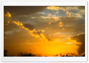 Gold Sunset Sky HD Wide Wallpaper for 4K UHD Widescreen desktop & smartphone
