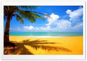 Golden Beach HD Wide Wallpaper for Widescreen