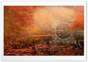 Golden Fall HD Wide Wallpaper for Widescreen