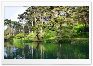 Golden Gate Park   Stow Lake   San Francisco HD Wide Wallpaper for Widescreen