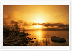 Golden Morning HD Wide Wallpaper for Widescreen
