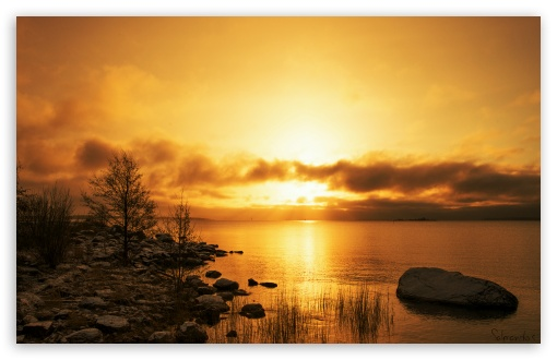 Golden Morning HD wallpaper for Wide 16:10 5:3 Widescreen WHXGA WQXGA WUXGA WXGA WGA ; HD 16:9 High Definition WQHD QWXGA 1080p 900p 720p QHD nHD ; UHD 16:9 WQHD QWXGA 1080p 900p 720p QHD nHD ; Standard 4:3 5:4 3:2 Fullscreen UXGA XGA SVGA QSXGA SXGA DVGA HVGA HQVGA devices ( Apple PowerBook G4 iPhone 4 3G 3GS iPod Touch ) ; Tablet 1:1 ; iPad 1/2/Mini ; Mobile 4:3 5:3 3:2 16:9 5:4 - UXGA XGA SVGA WGA DVGA HVGA HQVGA devices ( Apple PowerBook G4 iPhone 4 3G 3GS iPod Touch ) WQHD QWXGA 1080p 900p 720p QHD nHD QSXGA SXGA ;