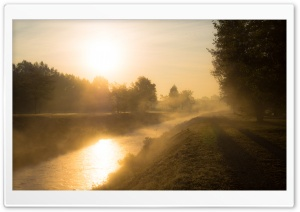 Golden Morning Mist HD Wide Wallpaper for Widescreen