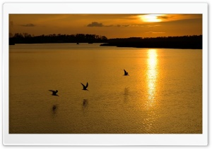 Golden Sunset Lake HD Wide Wallpaper for Widescreen
