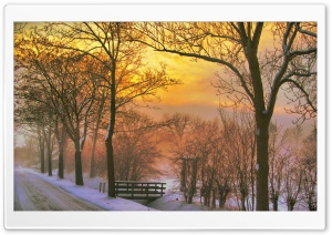 Golden Winter Sunset HD Wide Wallpaper for Widescreen