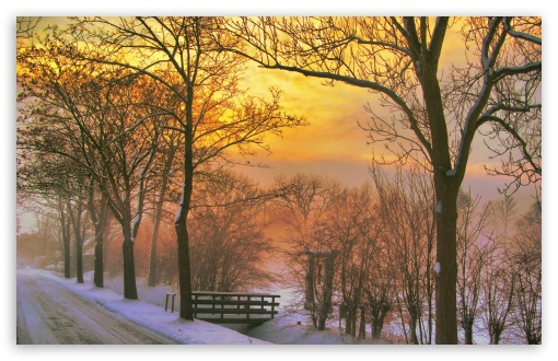 Golden Winter Sunset HD wallpaper for Wide 16:10 5:3 Widescreen WHXGA WQXGA WUXGA WXGA WGA ; HD 16:9 High Definition WQHD QWXGA 1080p 900p 720p QHD nHD ; Standard 4:3 5:4 3:2 Fullscreen UXGA XGA SVGA QSXGA SXGA DVGA HVGA HQVGA devices ( Apple PowerBook G4 iPhone 4 3G 3GS iPod Touch ) ; Tablet 1:1 ; iPad 1/2/Mini ; Mobile 4:3 5:3 3:2 16:9 5:4 - UXGA XGA SVGA WGA DVGA HVGA HQVGA devices ( Apple PowerBook G4 iPhone 4 3G 3GS iPod Touch ) WQHD QWXGA 1080p 900p 720p QHD nHD QSXGA SXGA ; Dual 16:10 5:3 4:3 5:4 WHXGA WQXGA WUXGA WXGA WGA UXGA XGA SVGA QSXGA SXGA ;