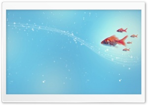Goldfish HD Wide Wallpaper for 4K UHD Widescreen desktop & smartphone