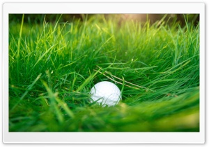 Golf Ball, Green Grass Ultra HD Wallpaper for 4K UHD Widescreen desktop, tablet & smartphone