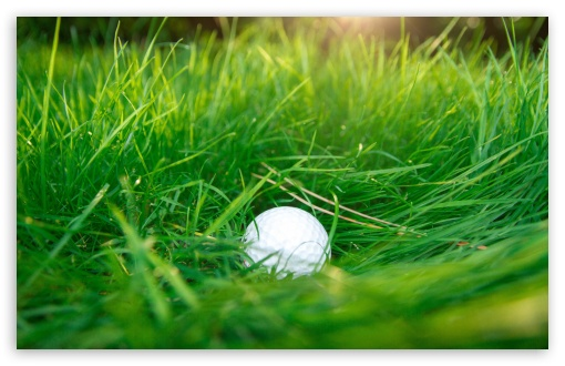 Golf Ball Green Grass Ultra Hd Desktop Background Wallpaper For 4k Uhd Tv Widescreen Ultrawide Desktop Laptop Tablet Smartphone